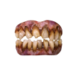 Dents d'Horreur Zombie Bitemares Trick or Treat Studios, Zombie
