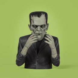 Universal Monsters Frankenstein Spinature, Frankenstein