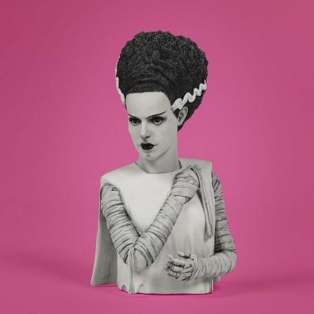 Universal Monsters The Bride of Frankenstein Spinature Vinyl
