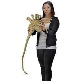 Alien/Predator, Aliens Réplique Mousse 1/1 Facehugger 105 cm