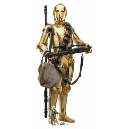 STAR WARS RISE OF SKYWALKER C-3PO CUTOUT